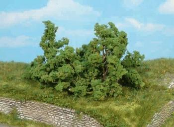 1179   5 Struiken groen  6-8 cm