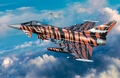 RE3970  Eurofighter Typhoon Bronze Tiger 1:144 kit
