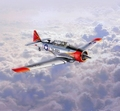 RE3924  T-6 G Texan 1:72 kit