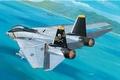 RE4021   F-14A Tomcat 1:144 kit