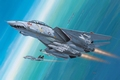 RE4049  F-14D Super Tomcat 1:144 Kit