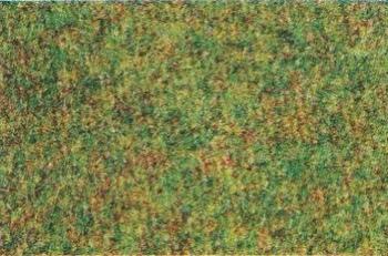 50007  Grasmat lentegroen