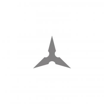 20005  Driehoekige schaalstok profi