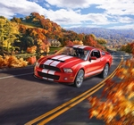 RE7044  Ford Shelby GT 500 2010
